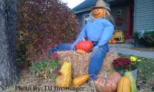 Scarecrow with Pumpkins