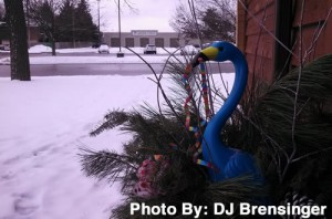 Blue Flamingo Mukwonago Wisconsin