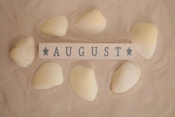 August with seashells on sand